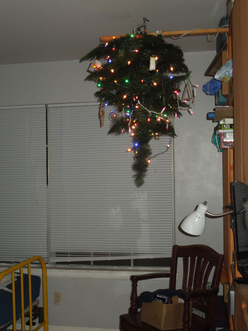Yes, the tree is hanging upside-down from a board attached to the entertainment center.  This is how we childproof.